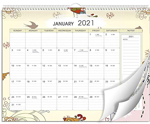 2021 Wall Calendar, YSAGi Monthly Calendar with Large Ruled Blocks, Wall Planner Calendar for 2021 Starts Now - Ends Dec 2021, Twin-Wire Binding, Family Calendar for Office & Home - 43 cm x 33.3 cm