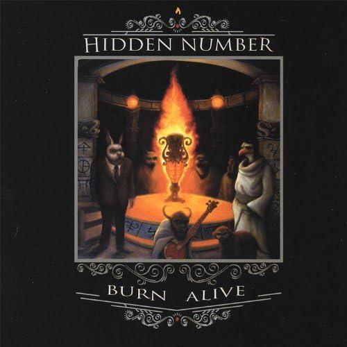Hidden Number