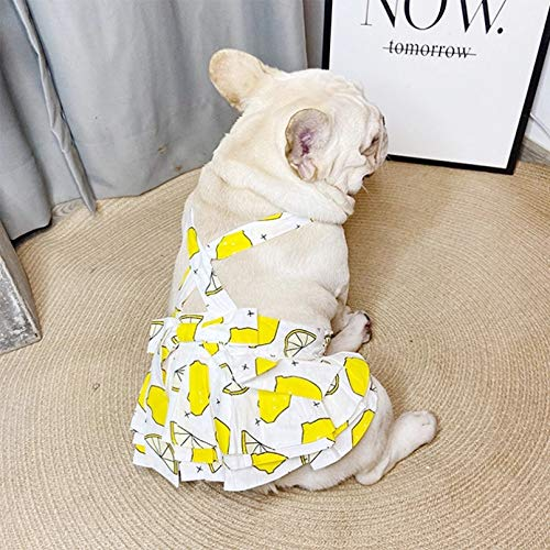 N / A Pet Dog Spring and Summer Clothes French Bulldog Summer Dress Pet Clothes Small Medium Dog Puppy Chihuahua Schnauzer Yorkie Corgi Pet Clothes are Pet Holiday Birthday Gifts