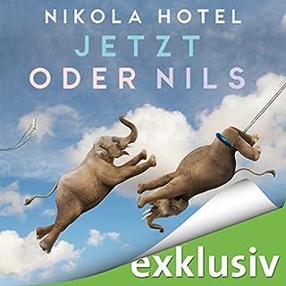 Jetzt oder Nils Titelbild