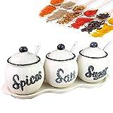 Tarro de especias de cerámica para alimentos con tapas y cuchara, conjunto de 3 contenedores de organizador de almacenamiento, condimento de porcelana y base para azúcar, café, té, hogar, kit par
