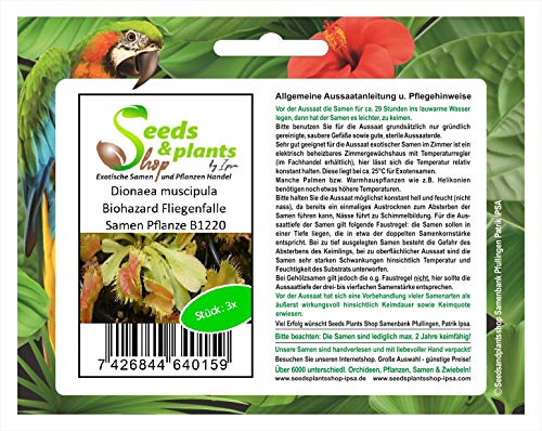 Stk - 3x Dionaea muscipula Biohazard Fliegenfalle Pflanzen - Samen B1220 - Seeds Plants Shop Samenbank Pfullingen Patrik Ipsa