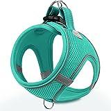 Joytale Step in Dog Harness,12...