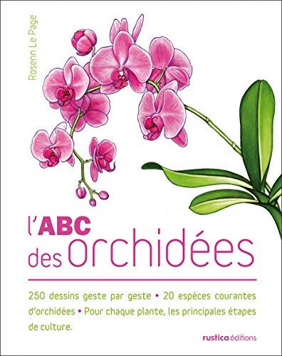 L'ABC des orchidées