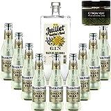 Paquete GINTONIC - Ferroni Gin Julio 'Mano de Buda' + 9 Fever Tree Ginger Beer Agua - (70cl 20cl + 9 *) + Pot 20 rebanadas de color amarillo limón deshidratado
