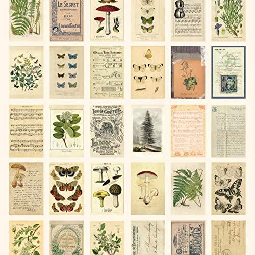 Miner papier 30st doos oude bos dieren planten specimen briefkaart Vintage Retro stijl creatief schrijven groet Gift ansichtkaarten, specimen