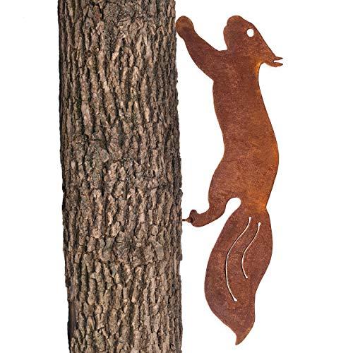 GK rostiges Eichhörnchen rennend -...