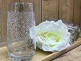 6er Trinkgläser | Wasserglas | 400cc | Gläser | Saftglas | Sarmasik