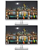 HP Business EliteDisplay E273 27' Screen Full HD LED-Lit Black/Silver Monitor 2-Pack