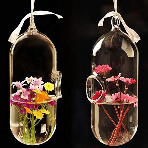 HO-TBO Pflanze Terrarium, Hydroponischen Pflanzen Blumen-Pillen-Form-hängender GlasVase Hauptdekor löschen Gewächshäuser Gartenarbeit (Color : Clear, Size : One Size)