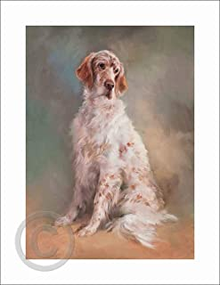 English Setter – by Jacqueline Stanhope. A signed and numbered limited edition print on 330gsm fine art paper.