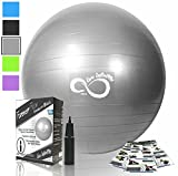 Live Infinitely Exercise Ball -Professional Grade Exercise Equipment Anti Burst Tested with Hand Pump- Supports 2200lbs- Includes Workout Guide Access- Balance Balls (Silver, 65 cm)