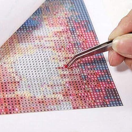 DIY Full Drill Stickerei-Farbe mit Diamond Cross Stitch Kits Kunsthandwerk f/ür Wohnwanddekoration 5D Diamond Painting Kits f/ür Erwachsene Kinder,Diamond Art Kits
