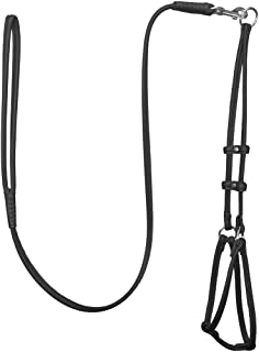 Best rolled leather dog harness Reviews