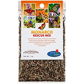 Monarch Butterfly Rescue Wildflower Seeds Bulk Open-Pollinated Wildflower Seed Packet, Non-GMO, No Fillers, Annual, Perennial Milkweed Seeds for Monarch Butterfly 1oz