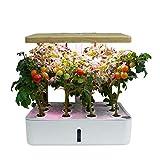 XLY Intelligente Indoor Hydroponics Garten Kit, Hydroponischen Garten Automatische...