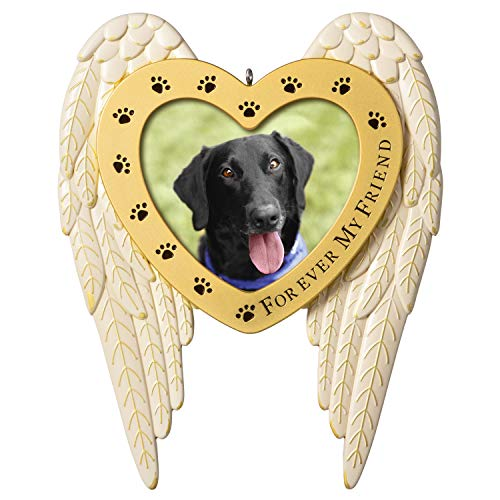 Hallmark Keepsake Christmas Ornament 2020 Forever My Friend Pet Memorial Metal Photo Frame