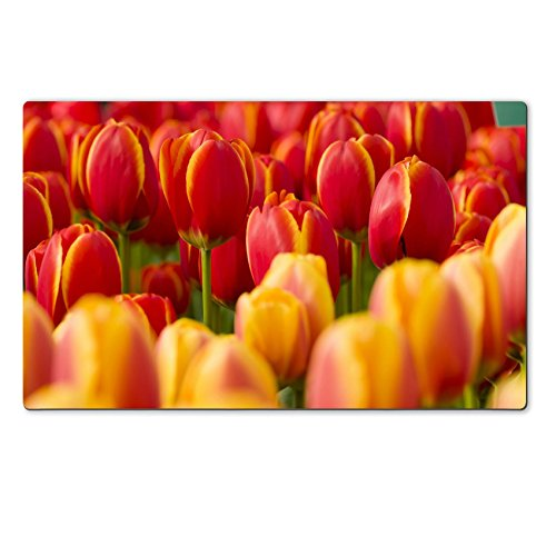 Luxlady Natural Rubber Large TableMat Image ID: 19065830 Detail of Colorful Tulip Flower Arrangement