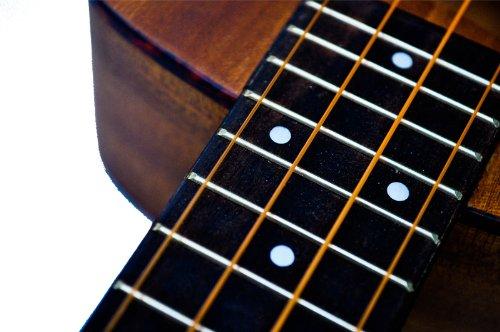 Light Aurora Strings Premium AURBL9-42 AURBL9-42 Nickel Plated Bass Guitar Strings