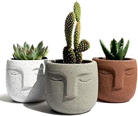 Gepege Indoor Succulent Plants Pot 3 Inch Set of 3 Concrete Head Planter for Home Office Desk product image