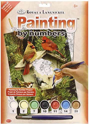 Royal & Langnickel Native Neighbors Design Paint by Numbers Kit