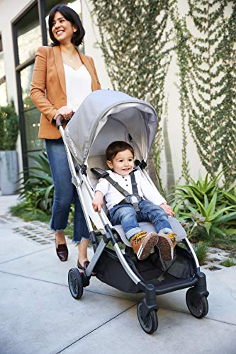 UPPAbaby MINU Stroller - Devin (Light Grey/Silver/Chestnut Leather)