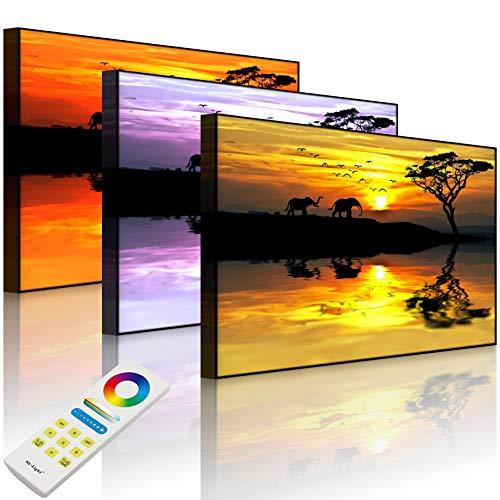 Lightbox-Multicolor | LED Bilderrahmen mit Motiv | Elefanten in Afrikanischer Steppe | 100x70 cm | Front Lighted