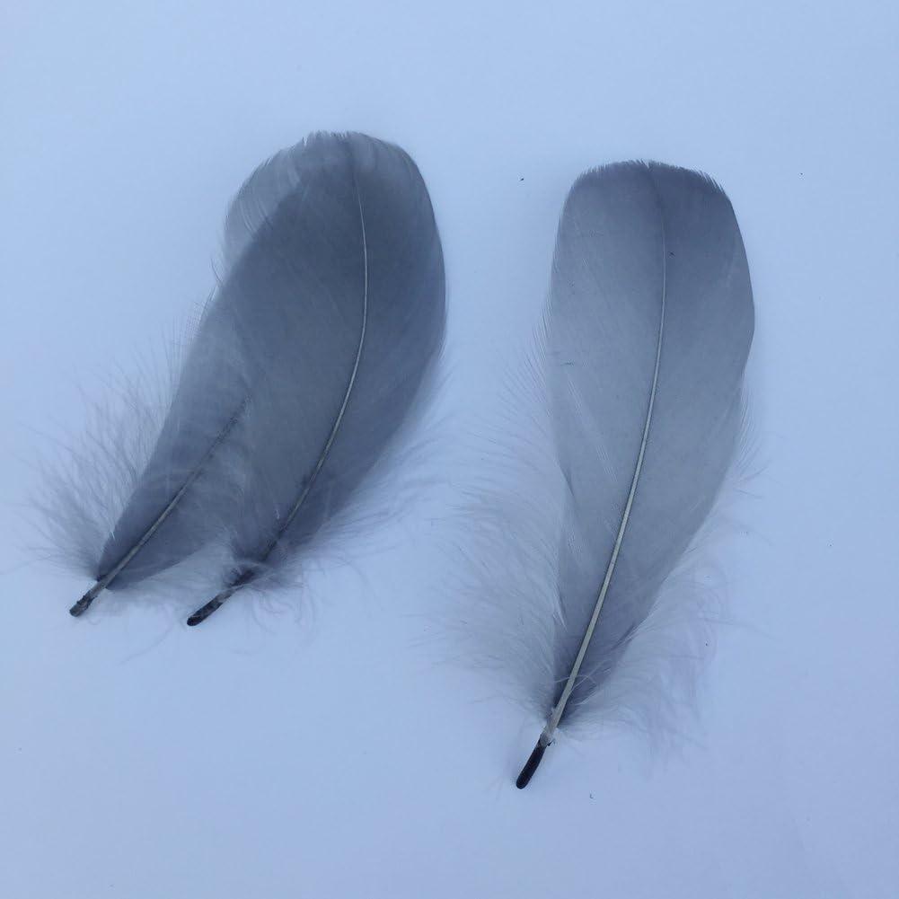 confezione da 100 Grey Sowder naturale piume d oca accessori di abbigliamento