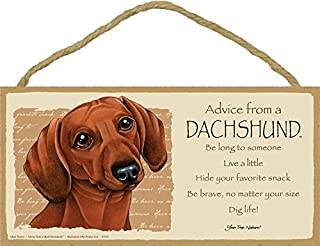 """SJT ENTERPRISES, INC. Advice from a Dachshund (Red) 5"""" x 10"""" MDF Wood Plaque Sign Licensed from Your True Nature (SJT67532)"""