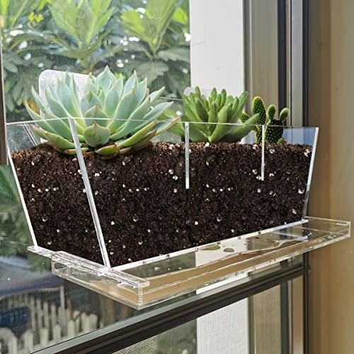 Maceta NIUXX con bandeja de acrílico de drenaje, macetas de flores de cactus suculentas con ventosa, recipiente para maceta de ventana para decoración de interiores y exteriores