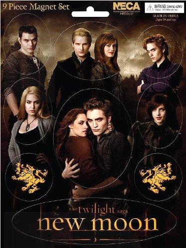 NECA–21326–Twilight–Set di magneti Cullen Family