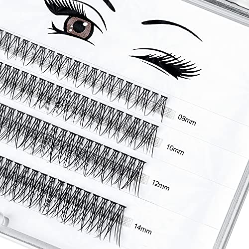 LANKIZ Individual Lashes, 12 Root Fish-tailed Cluster Lashes for DIY Eyelash Extension, 0.10mm 8-14mm Mix Faux Mink False Lash Extensions