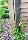 A Sleek, Narrow and Unobtrusive 9 Foot Tall Downspout Trellis to Make Your Gutter/Downspou...