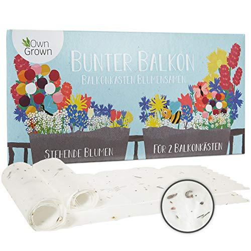 Bunter Balkon Blumenmischung - 2 Premium Saatteppiche für Balkon Blumen zum einfachen Anbau, Sommerblumen und Wildblumensamen von OwnGrown, insektenfreundliche Blumensamen einjährig