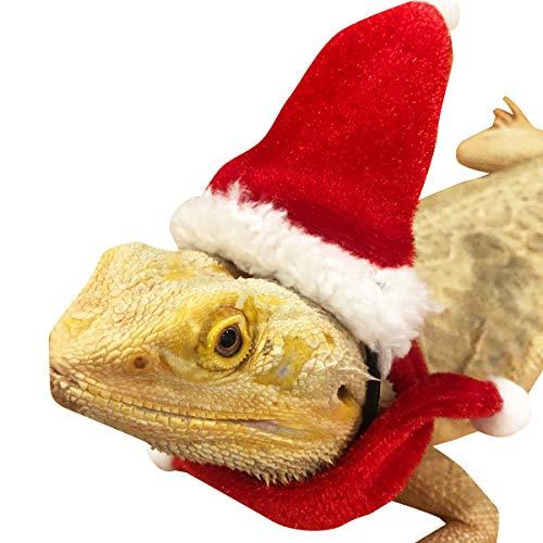 Yinuoday - Juego de bufanda, gorro, cono de lagarto, bufanda con sombrero de Navidad, lagarto, ropa de disfraz de Navidad