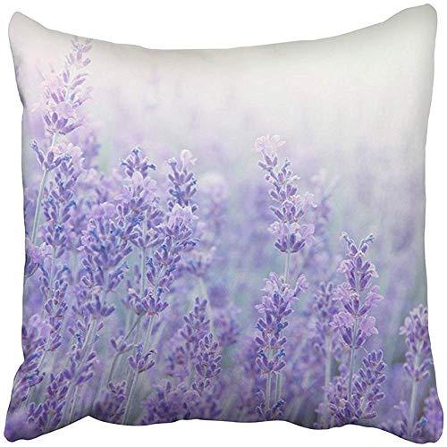 SSHELEY Kissenbezüge Cases Blumen bei Sonnenlicht im Fokus Pastellfarben und Unschärfe Lavande Field Provence Kissenbezüge Case Cover Cushion