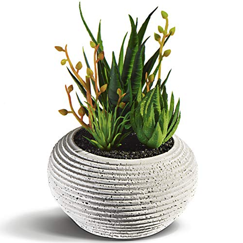 Succulents Artificial Plants in Cement Pots - Fake Plants of Realistic Look - Small Artificial Plants in Pots for Home Decor Indoor - Fake Succulents for Home and Office Interior - Faux Plants