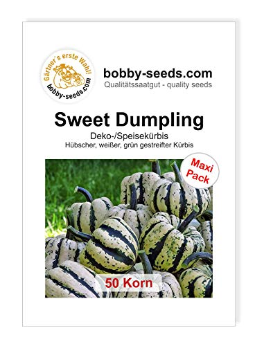 Sweet Dumpling Kürbissamen von Bobby-Seeds, 50 Korn