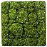 ZCYY Tappeto erboso Artificiale, 30x30cm Forma di Pietra Tappeto erboso di Muschio Tappeto erboso Artificiale Verde per Interni Tappeti erbosi Finti Muschio di zolla per la Decorazione