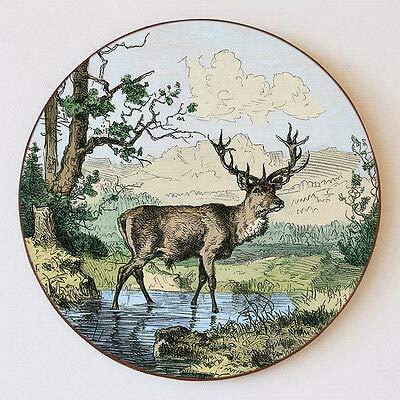 Kunstdruck Stolzer Hirsch Gebirge Wald Bach Geweih Damwild Jagd Schützenscheibe 41cm 110