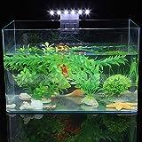 bizofft Luz LED de ahorro de energía impermeable de la luz del acuario de la lámpara del clip de alta eficiencia de la lámpara del clip de acuario para la cría de acuario de agua dulce tanque de