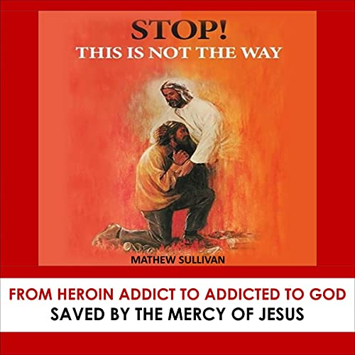 Stop! This Is Not the Way: Saved by the Mercy of Jesus cover art
