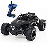 LBLA RC Car, Newest 2.4 GHz High Speed Remote Control Car 1/16 Scale Off Road RC Trucks, Racing Toy Car for All Adults and Kids