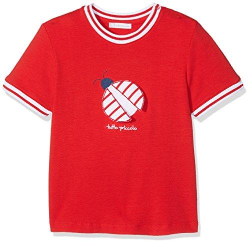 Tutto Piccolo 4660S18 Camiseta, Bebé-Niños, Rojo (Red R00), 98 (Tamaño del Fabricante:36.M)