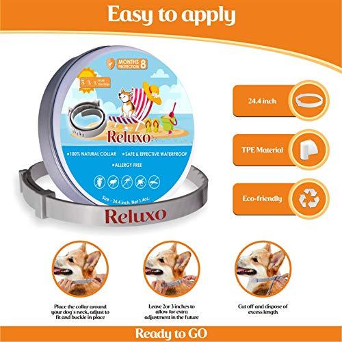 Eheim 2401020 Innenfilter aquaball 60 mit Filterpatrone und Mediabox - 4