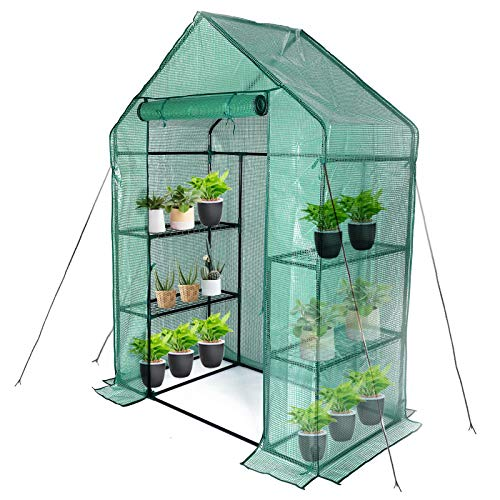 Greenhouse,Indoor And Outdoor Greenhouse,Portable Greenhouse With Anchors And Ropes,Grow Plants Seedlings Herbs Or Flowers(56'×30'×76')