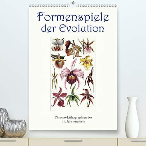 Formenspiele der Evolution. Chromolithographien des 19. Jahrhunderts (Premium, hochwertiger DIN A2 Wandkalender 2021, Kunstdruck in Hochglanz)