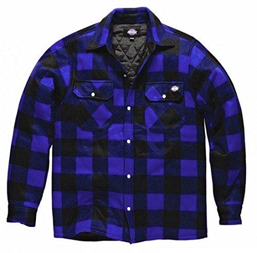 Dickies Holzfällerhemd Thermohemd Portland (XL, Royalblau/schwarz)