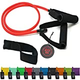 TRIBE Single Resistance Bands Set, Exercise Bands, Workout Bands with Fitness Band, Handles, Door Anchor & eBook for Resistance Training, Physical Therapy, Gym & Home Workout Gear. One Single Band Set