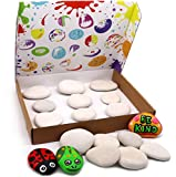 Kind Rocks 9 Large Decorative Stones for Painting - Rock Painting Arts and Crafts for Kids and Adults - Spreading Kindness and Positivity Through Painting Stones - Pebbles for Craft